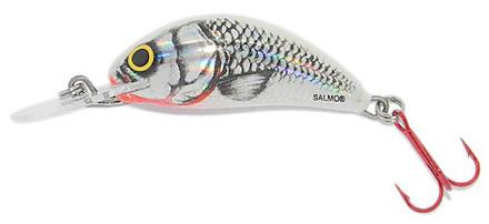 Salmo Hornet 3,5cm, Silver White Shad!