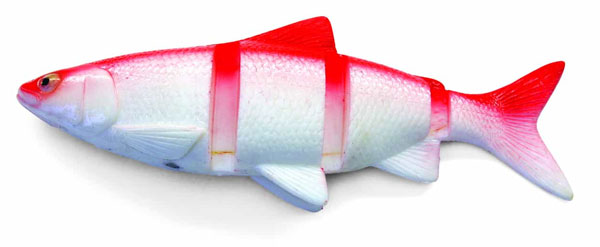 "Castaic Swimmin' Cisco 10"" (2 Optionen) - Red Shad"