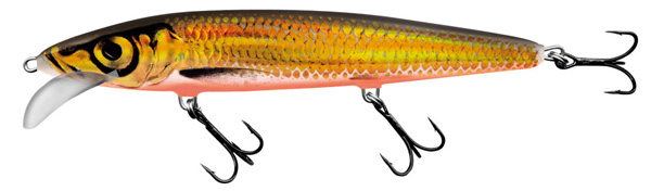 Salmo Whacky 12cm (4 Optionen) - Gold Chartreuse Shad (GCS)