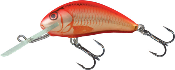 Salmo Hornet 4cm (4 Optionen) - UV Orange Crush (UVC)