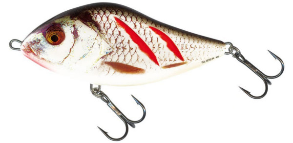 Salmo Slider 6cm Floating (5 Optionen) - Wounded Real Grey Shiner (WGS)