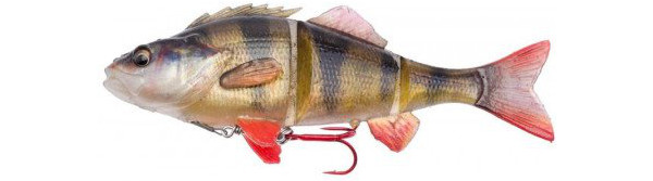 Savage Gear 4D Line Thru Perch + Salmo Surprise (6 Optionen) - Perch