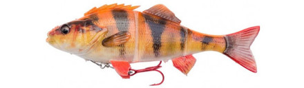 Savage Gear 4D Line Thru Perch + Salmo Surprise (6 Optionen)