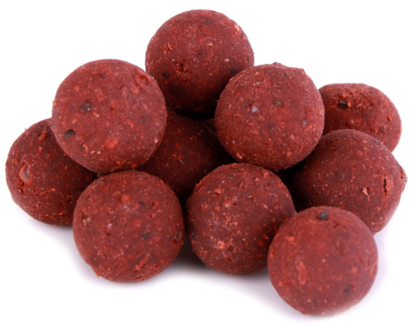Premium Readymade Food Source Boilies in 15 oder 20mm (4 Optionen)