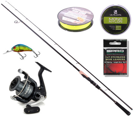 Deluxe Spinn Set mit Ultimate Spin & Jig Rute, Shimano Rolle und mehr! (3 Optionen)