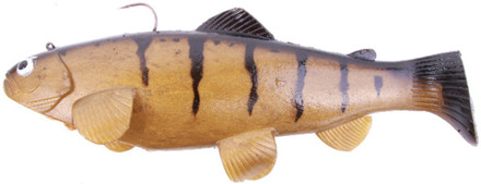 Castaic Swimbait Trout