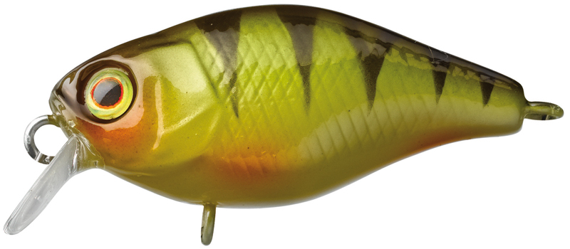 Illex Chubby 38 - Perch