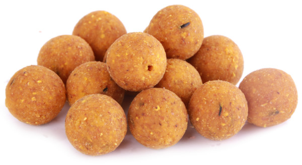 5kg Readymade Q-Boilies in 15 oder 20mm - Scopex Cream