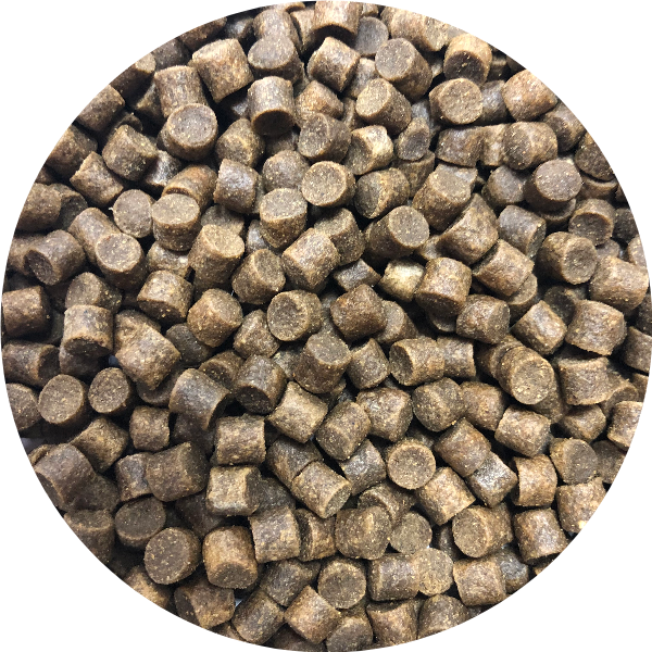 Carp Pro Feed Pellets 6mm - Plus