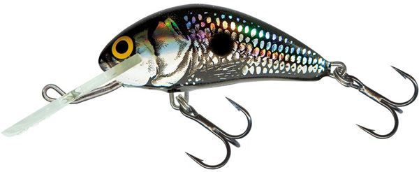 SUPERDEAL! Salmo Hornet 6cm Floating (9 Optionen) - Black Silver Shad (BSS)