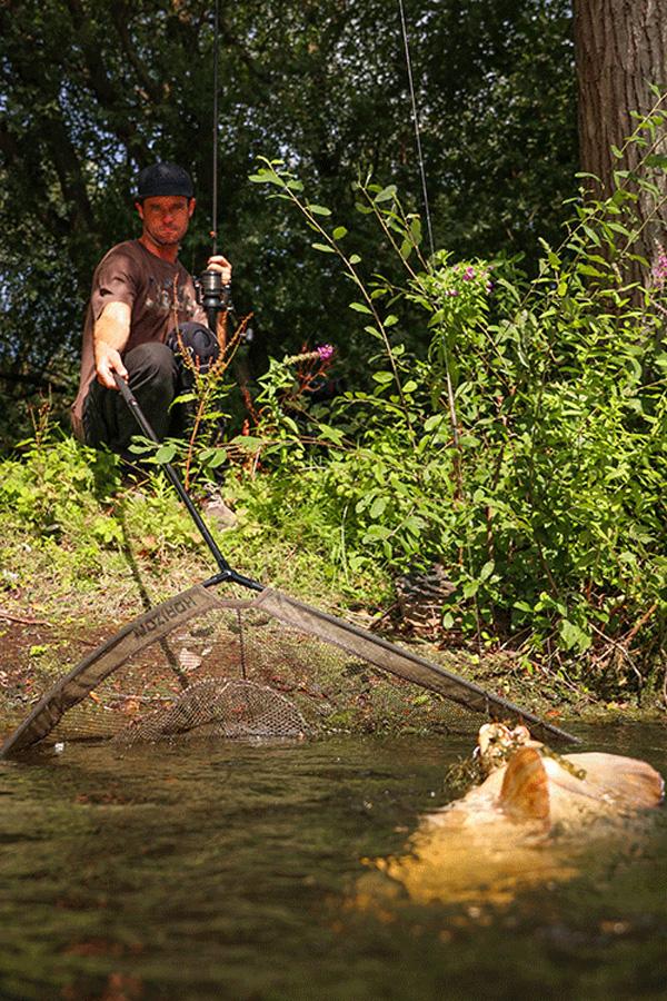 FOX Horizon X4 42 8ft Pole Landing Net Karpfenkescher