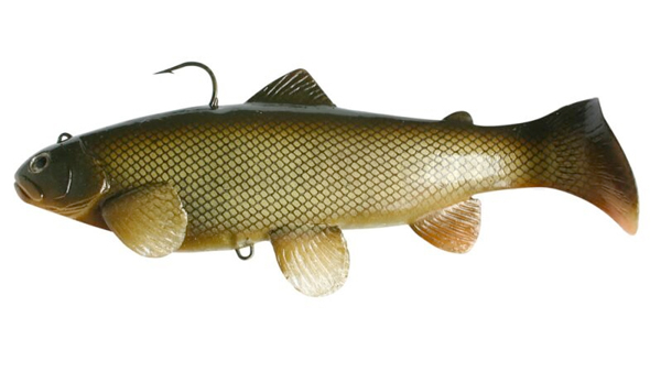 Castaic Swimbait Trout - Carp