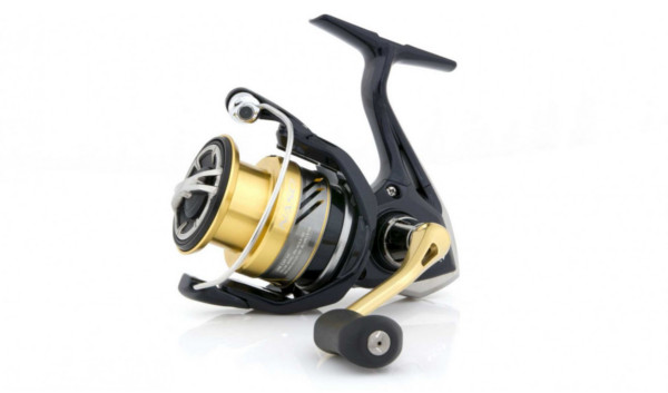 Shimano Nasci FB (8 Optionen)